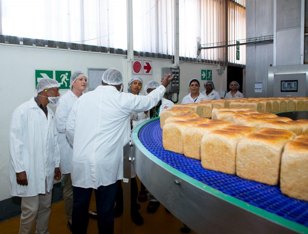 albany bread