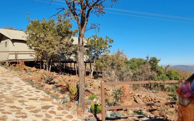 Idwala Le Ingwe Lodge – luxury tent experience Gauteng